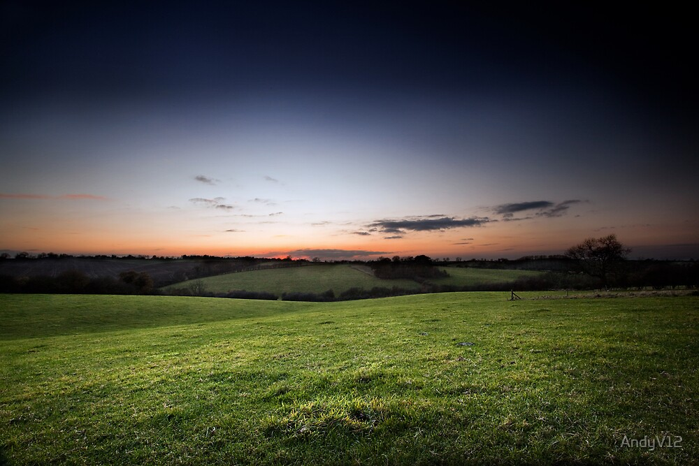 On Ingarsby Hill by Andy Freer