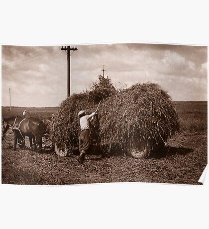 Hay Wagon, Carpathian Foothills, Ukraine Poster