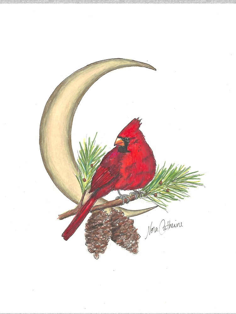 Cardinal - watching over me by noracatherine