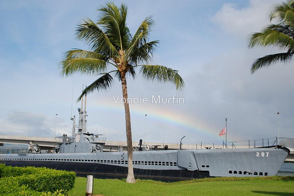 Rainbow in Hawaii by Vonnie Murfin