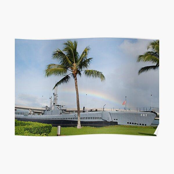 Rainbow in Hawaii Poster