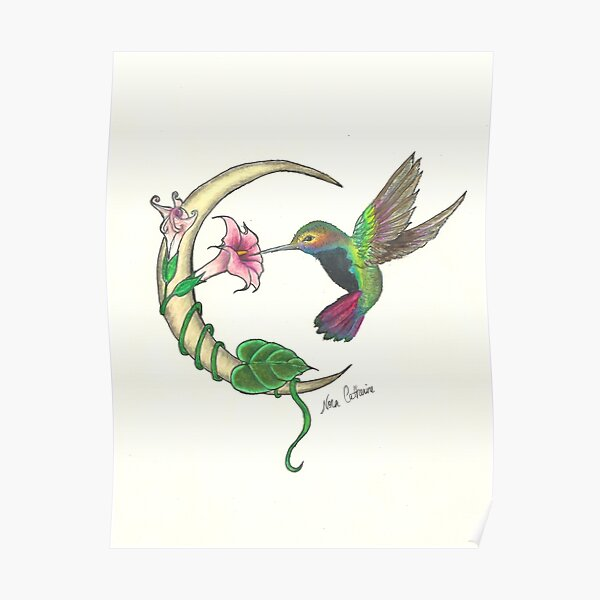 Hummingbird - sweet nectar Poster
