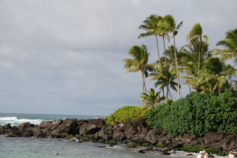 Hawaii Ocean by Vonnie Murfin