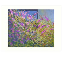 Butterfly Bushes Art Print