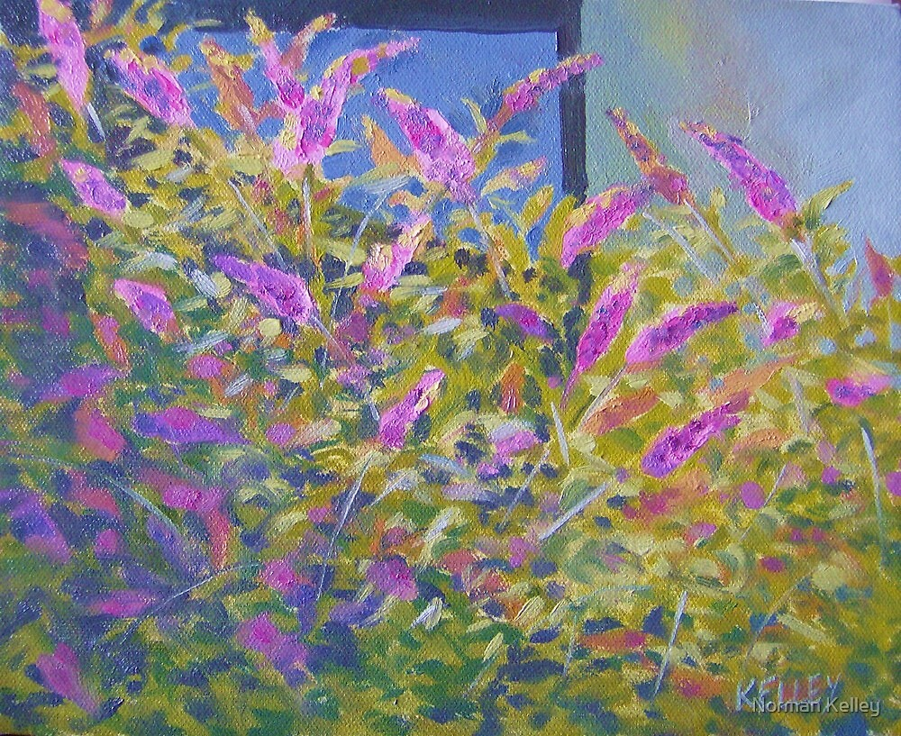 Butterfly Bushes by Norman Kelley