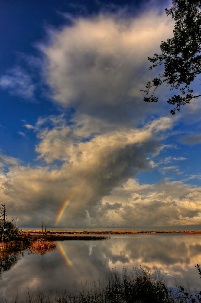 Rainbow Sky by Randall Scholten