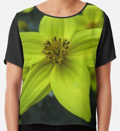 wundervolle gelbe Blume, Blüte, Blumenwiese Chiffontop für Frauen