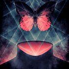 Beautiful Symmetry Surreal Butterfly by barrettbiggers