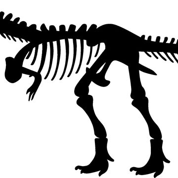 Tyrannosaurus T-Rex Skeleton by sweetsixty