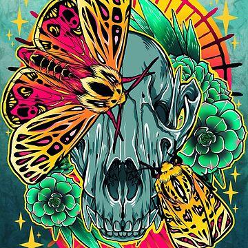 Mexican Tiger Moth by retkikosmos