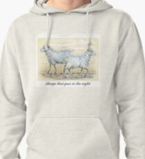 Sheeps that pass in the night Pullover Hoodie