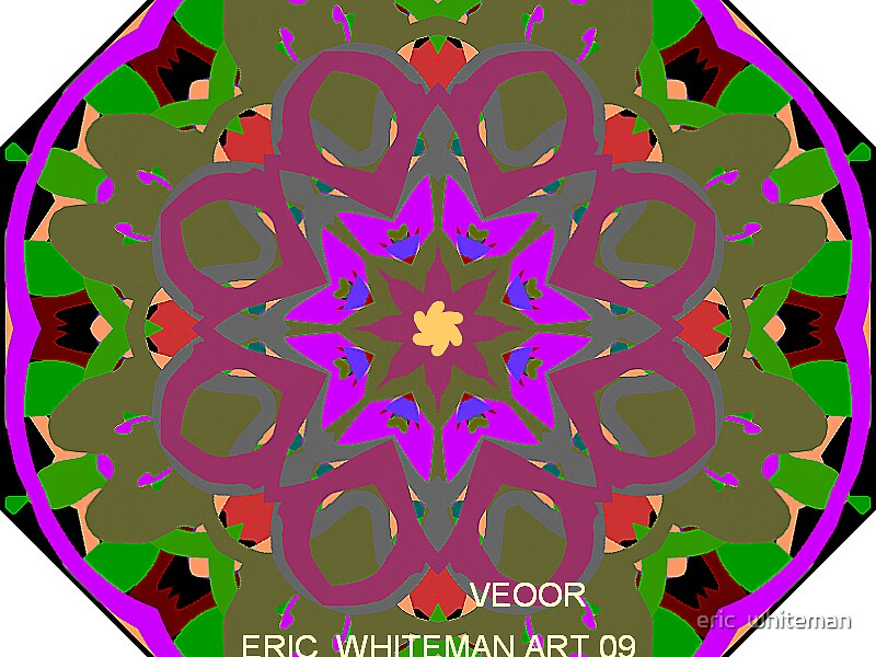 ( VEOOR  ERIC WHITEMAN  ART   by eric  whiteman