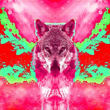 Wolf third eye opening by emphatic