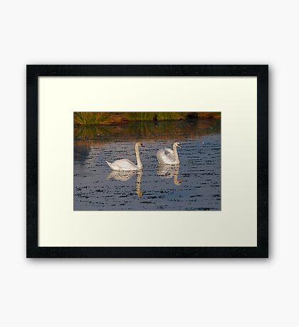 Magra 12 Framed Print