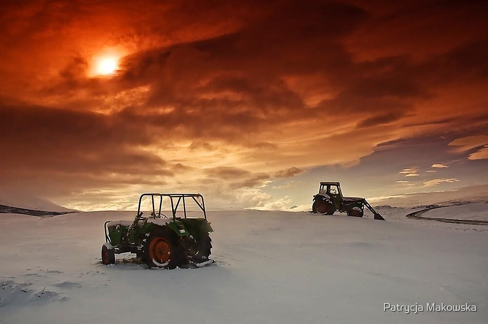Iceland - on the farm by Patrycja Makowska