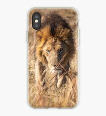 Approaching Lion iPhone Case