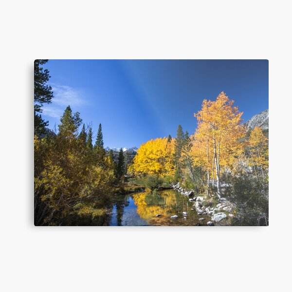 Bishop Creek North Fork Fall Metal Print