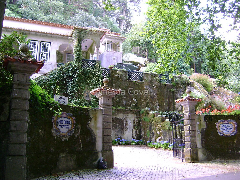 welcome to paradise 89..quinta de s.antonio sintra portugal.. by Almeida Coval