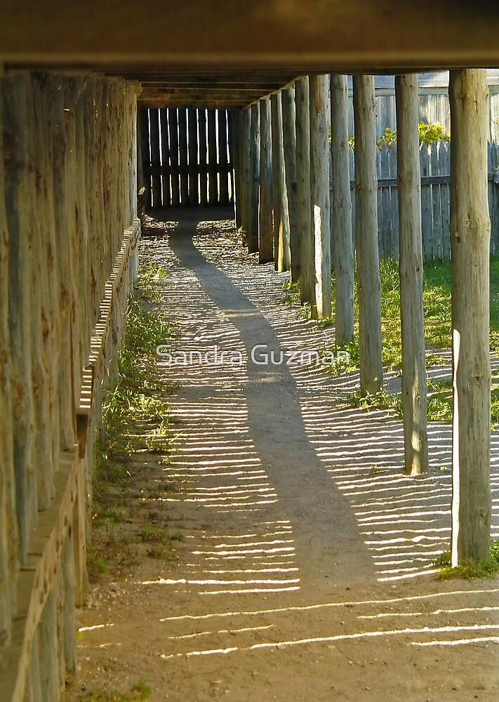 TheLong winding path by Sandra Guzman