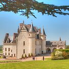 Chateau D'Amboise with Lebanese Cedar by Michael Matthews