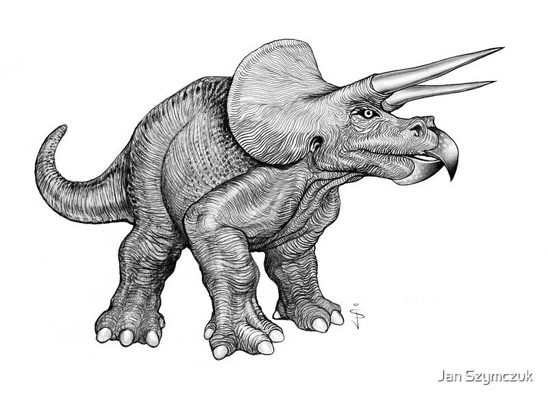 """Triceratops (pencil)"" by Jan Szymczuk 