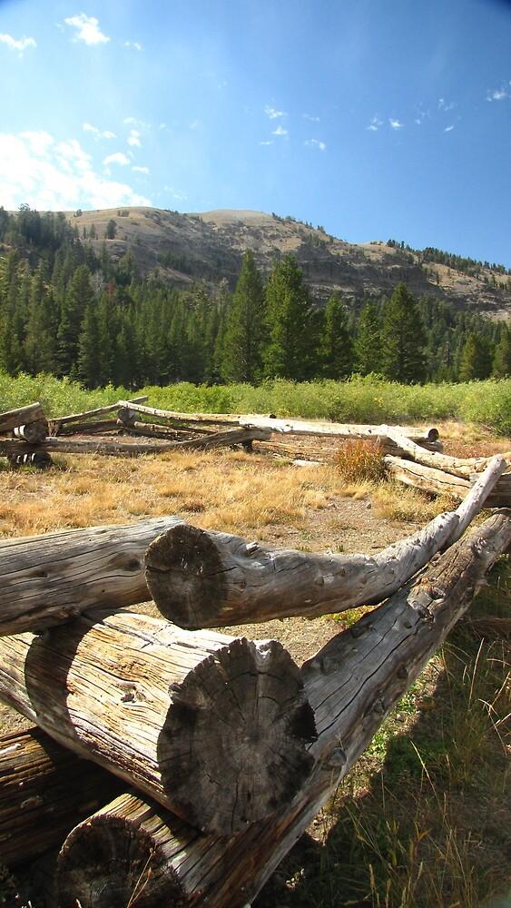 Old West remnant by James Tase