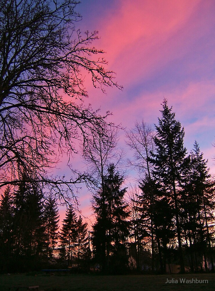 Morning Glow by Julia Washburn