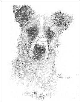 Sad dog pencil portrait by Mike Theuer