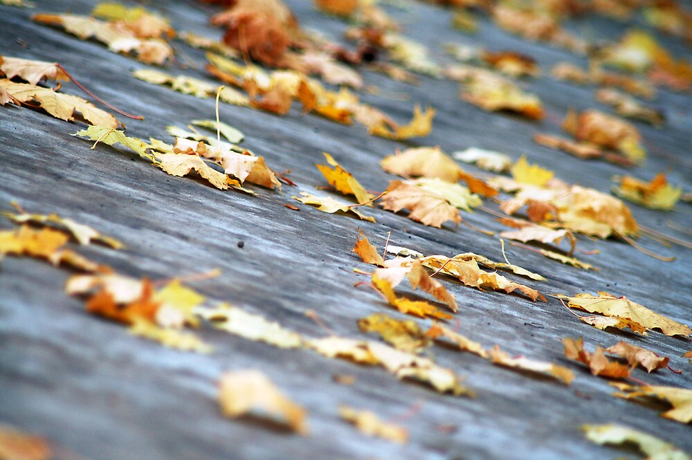 falling by afsan a