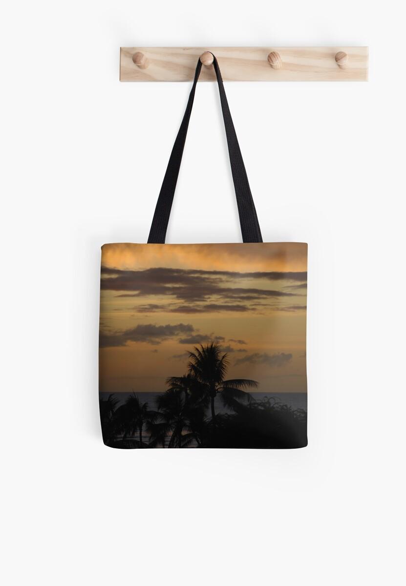 Hawaii Sunset by Vonnie Murfin