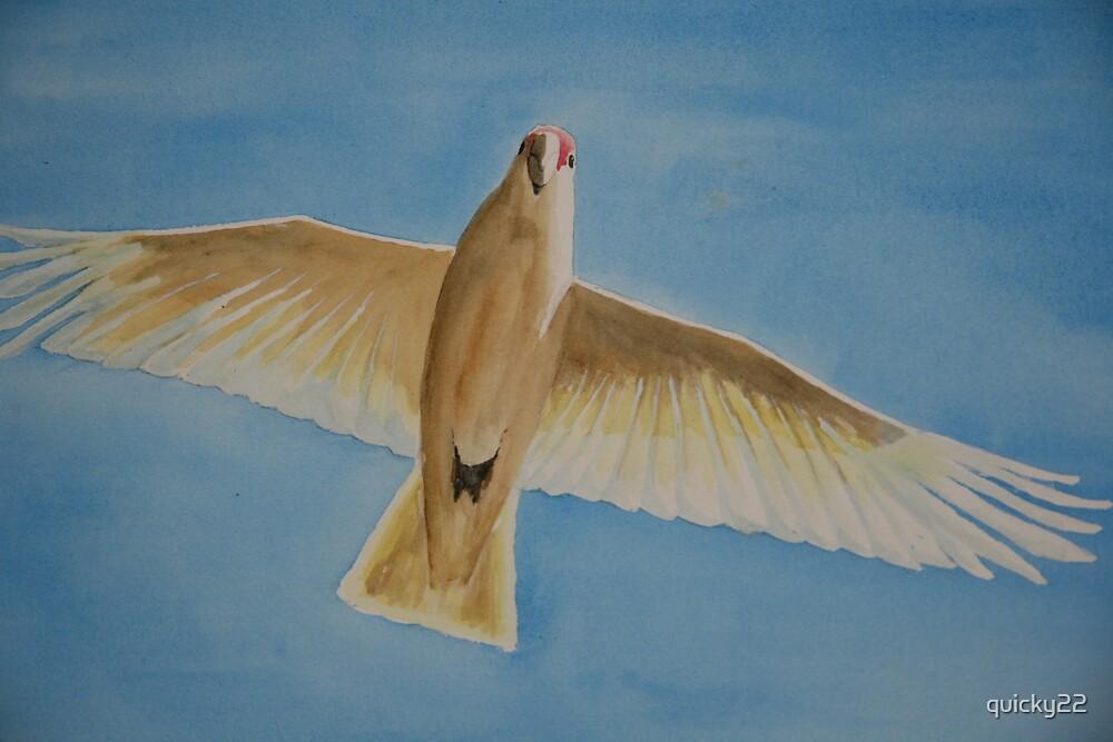 corella in flight by quicky22