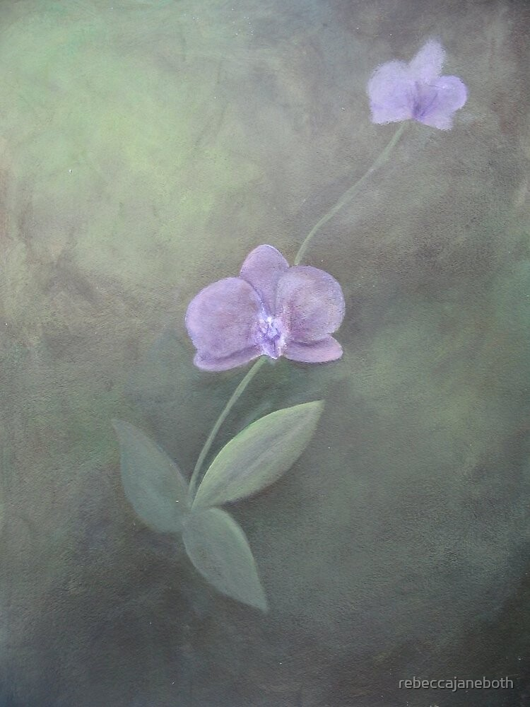 Purple Orchid by rebeccajaneboth