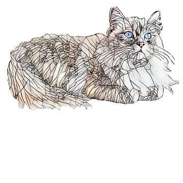 Seal Ragdoll Design - Floppy Cat Lovers Gift by DoggyStyles