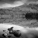 Helvellyn from Thirlmere by Martin Griffett