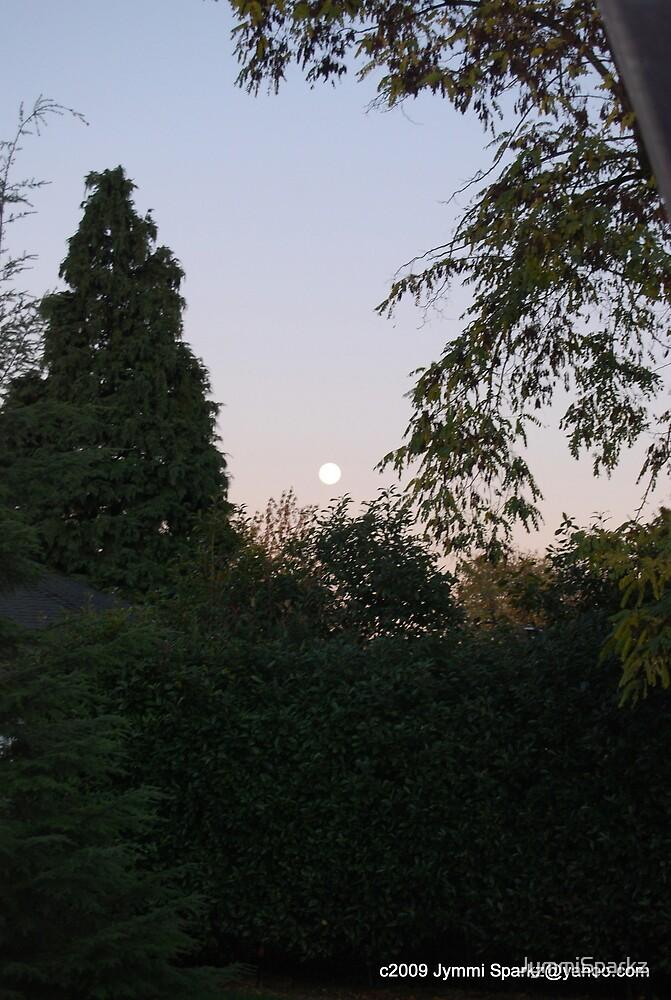 Full Moon by JymmiSparkz