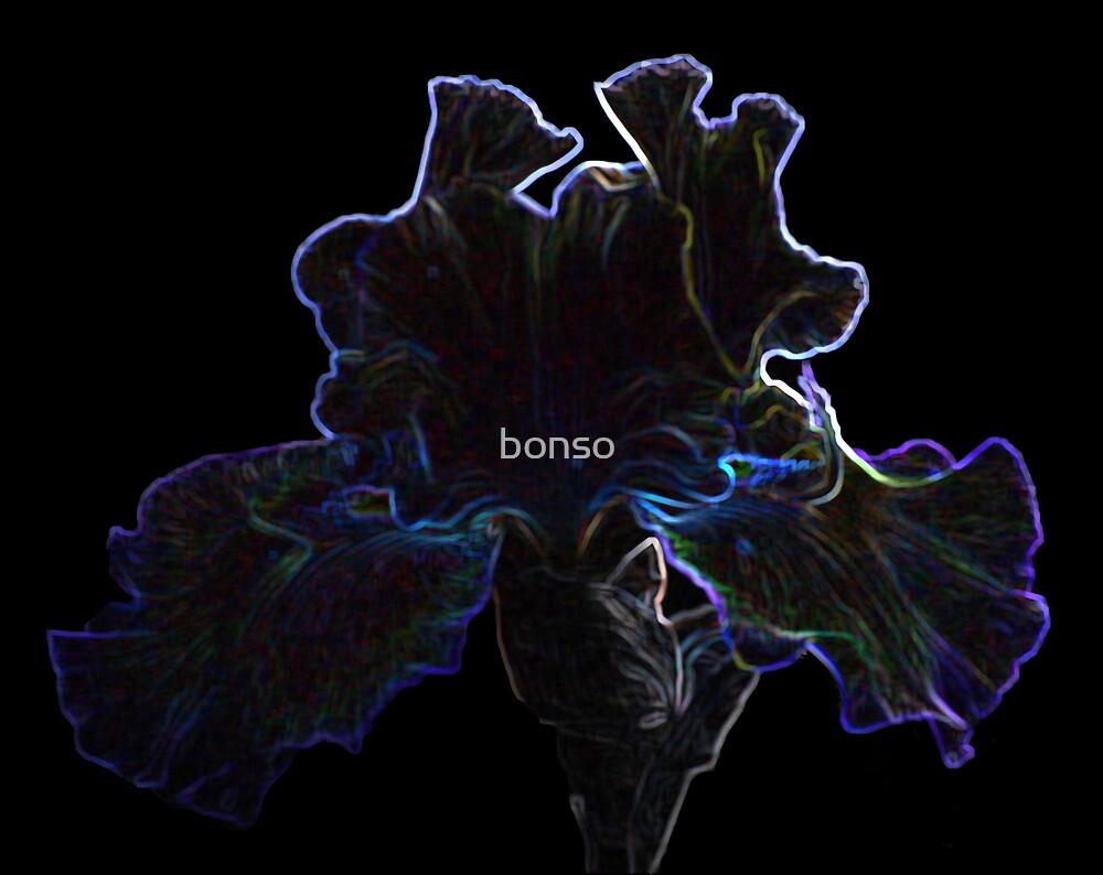 Glowing Iris by bonso