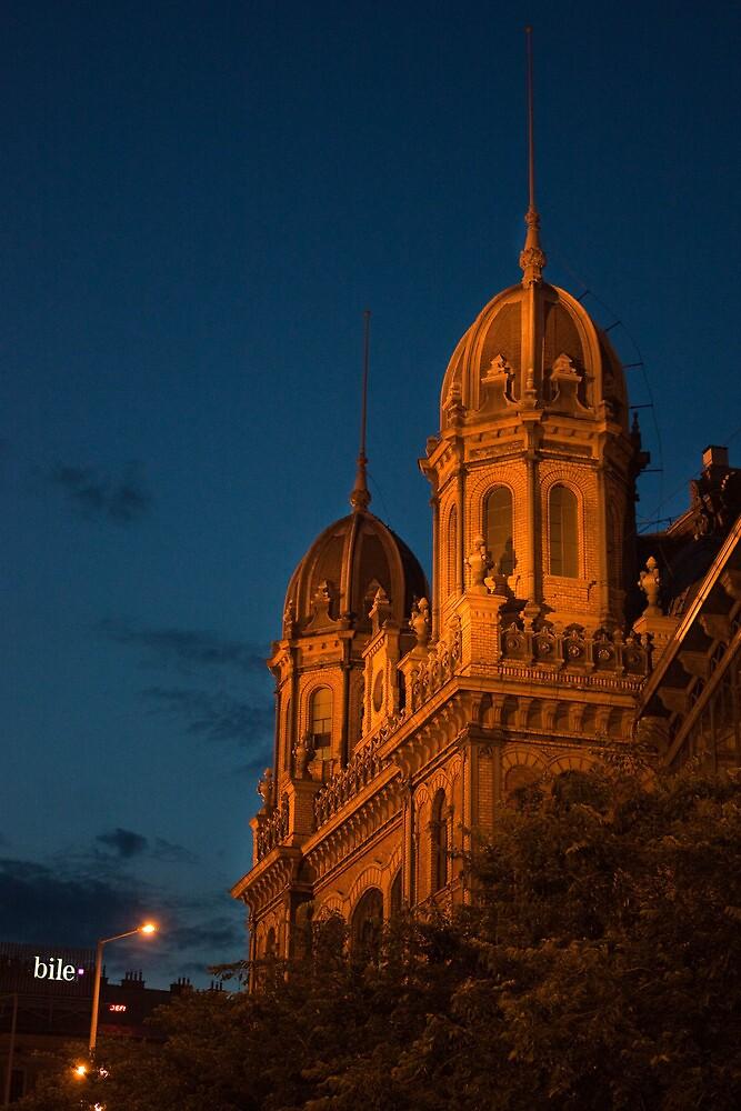 Budapest at night by sanyi