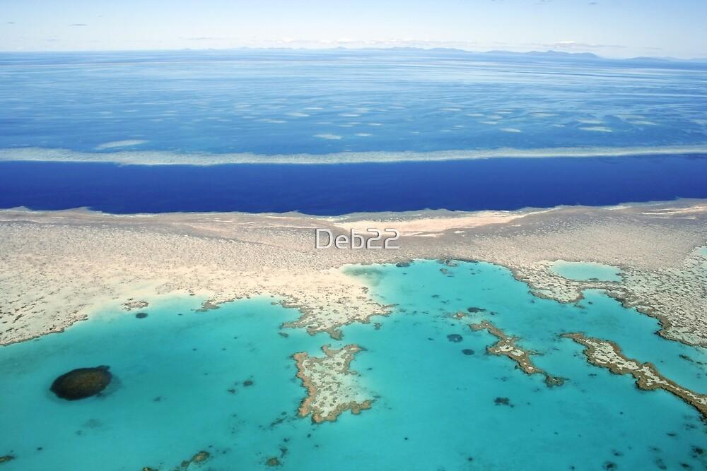 Great Barrier Reef pontoon, Queensland, Australia by Deb22