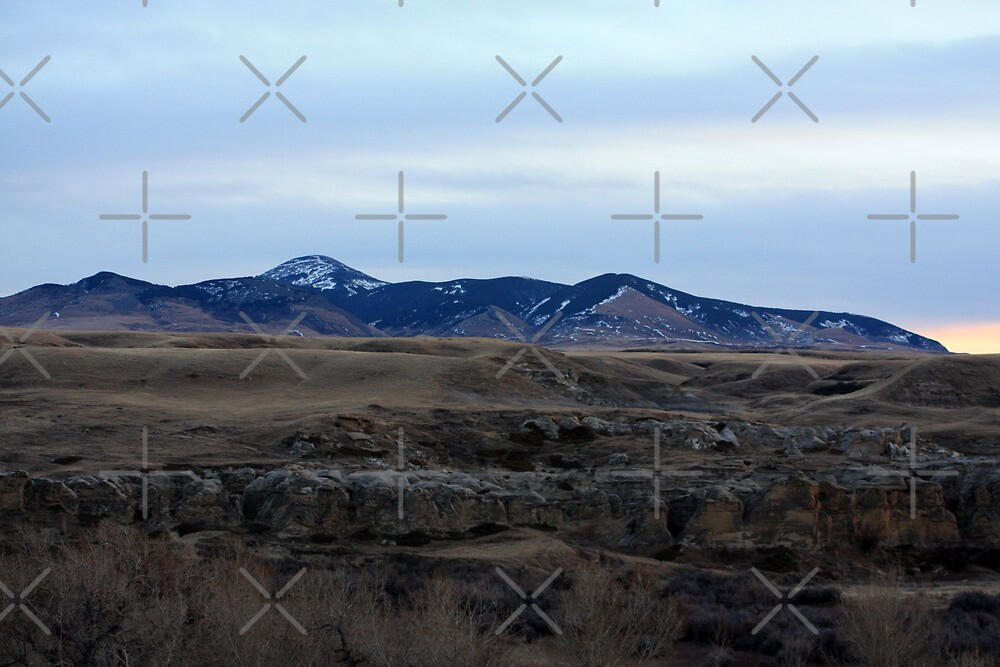 Sweet Grass Mountains, Montana by Alyce Taylor