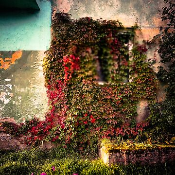 Old wall by LoraSi