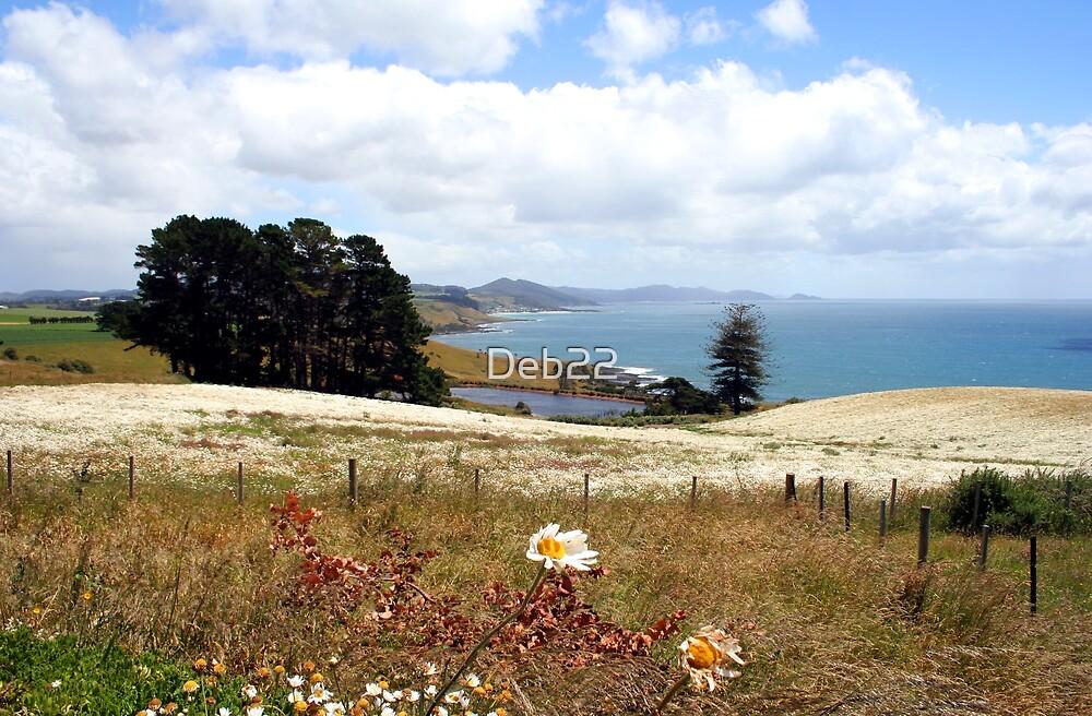 Field of flowers, Tasmania, Australia by Deb22