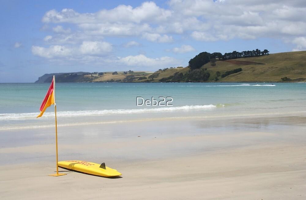 Boat Harbour Beach, North West Tasmania, Australia by Deb22
