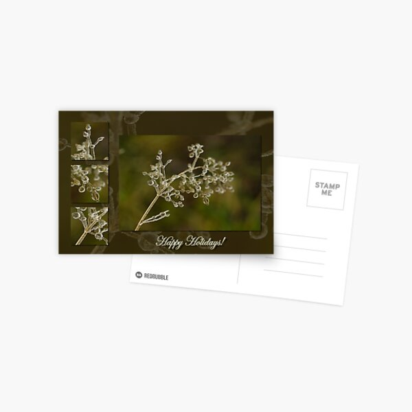 Crystal Elegance - Happy Holidays! Postcard