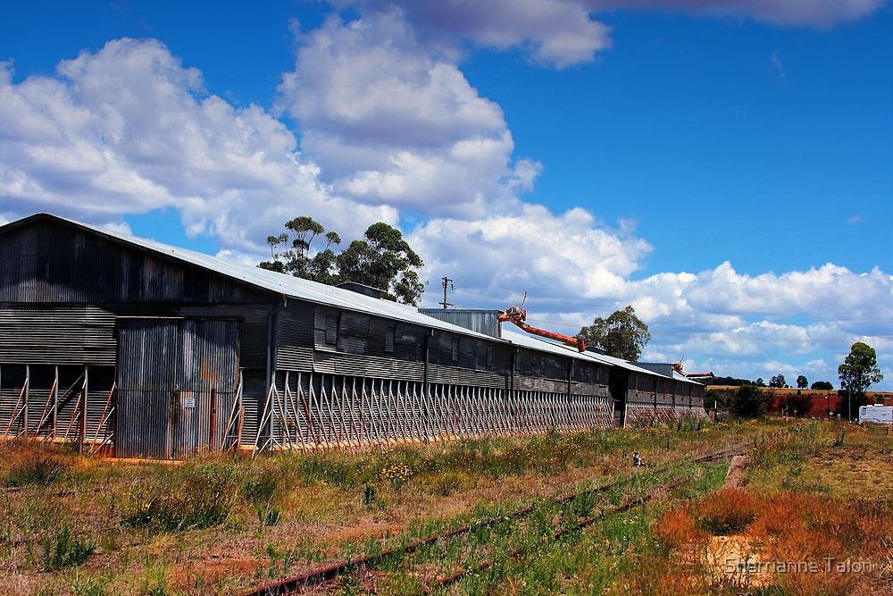 Old Train Shed by Sherrianne Talon