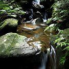 Three Stone Falls by Tatiana R