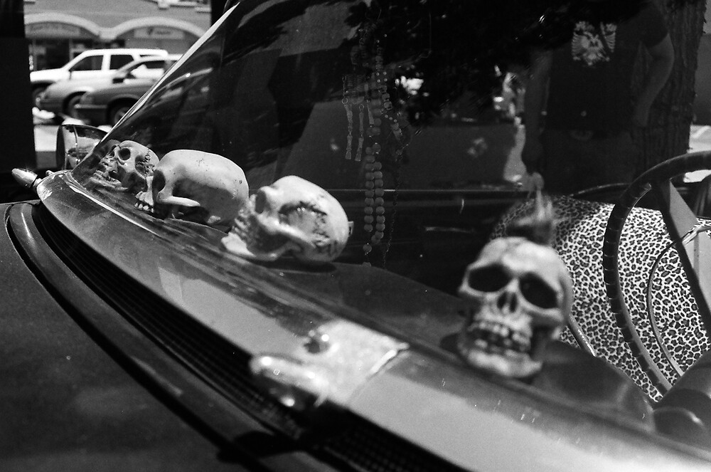skulls on the dash by historicvisions