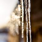 Icicles by Yana Art