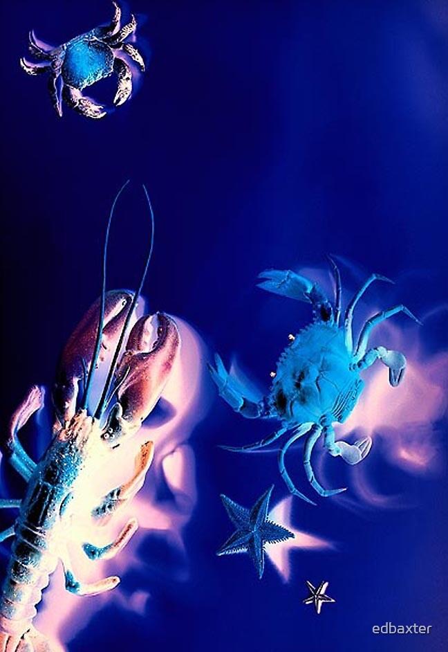 deep blue by edbaxter