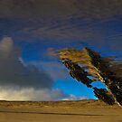 Surreal Beach 3 by Michelle Walsh