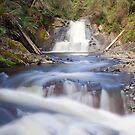 Tanjil Falls by Travis Easton